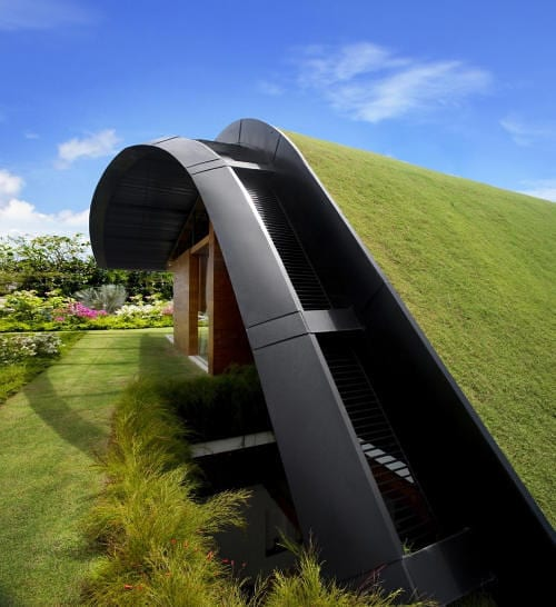 The Meera House Is Covered in Grass 9