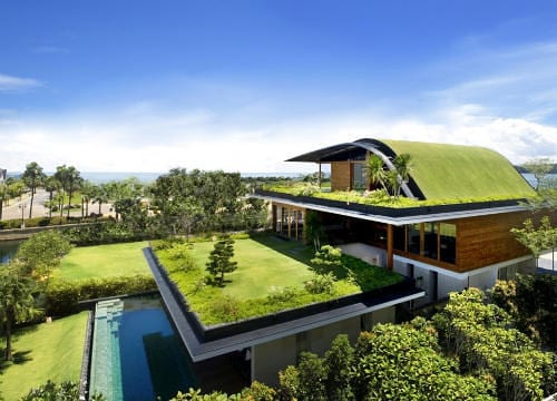 The Meera House Is Covered in Grass 7