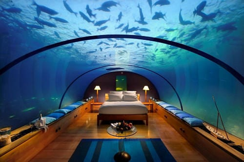 Underwater Luxury Honeymoon Suite With the Fishes 11