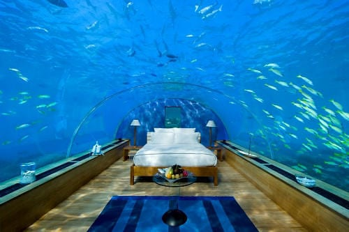 Underwater Luxury Honeymoon Suite With the Fishes 10
