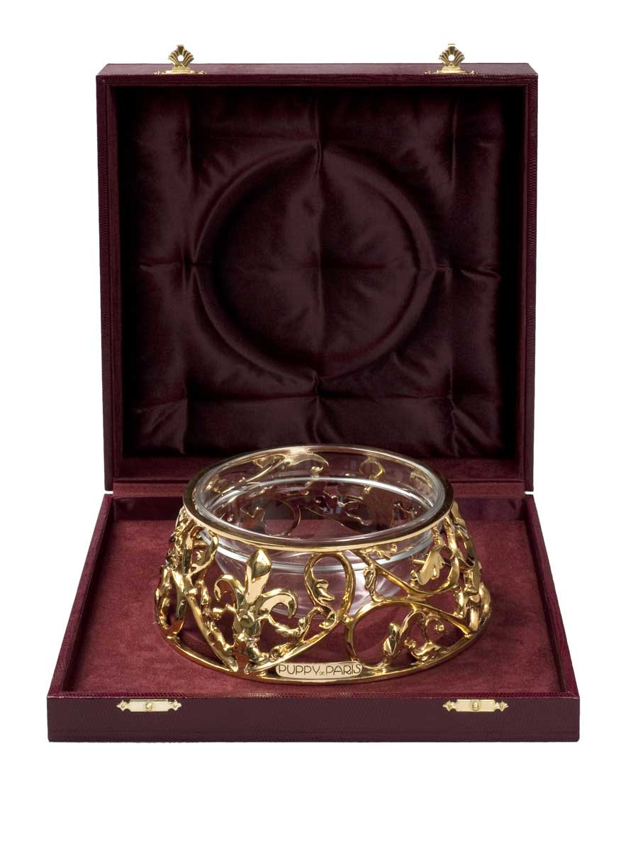 Gold Gilded Dog Bowls And Luxury Kennels