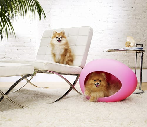 chic pink dog bed