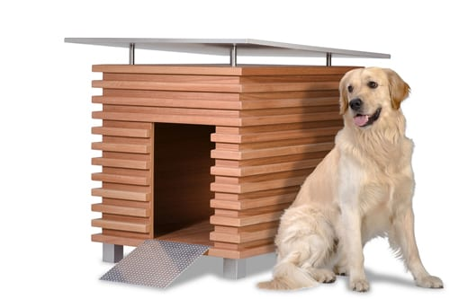 In the Doghouse: 7 Funky, Mod Pet Furniture Ideas