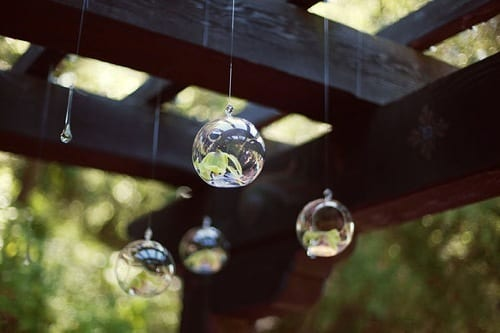 hanging bubble candles