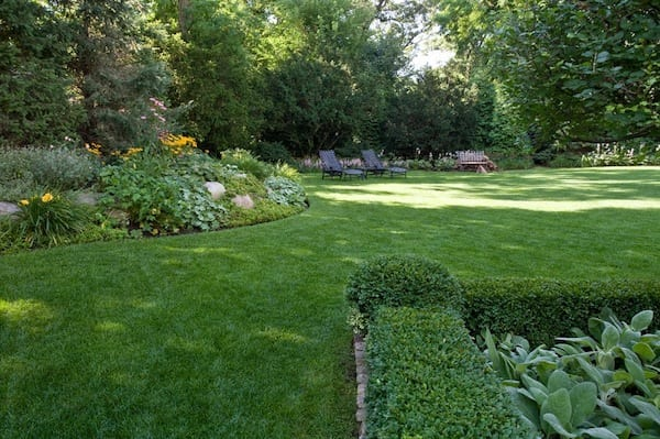 green lawn landscaping