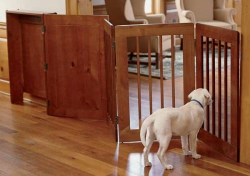 House Plans and Interior Decorating with Pets in Mind